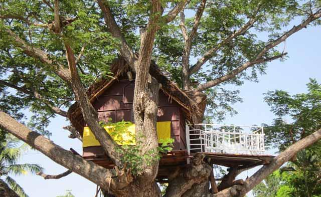 Kleine Abenteuerplätze für Kinder im Baumhaus